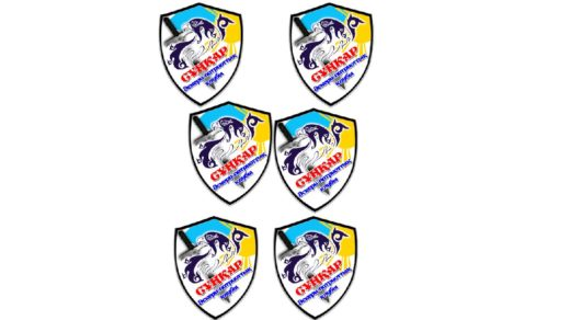 Эмблема организации охраны [CDR]