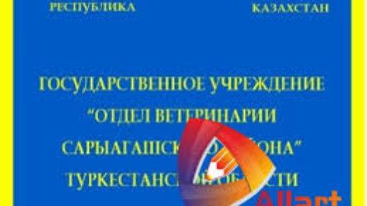 Образец паспорт школы, на русском и на казахском языке