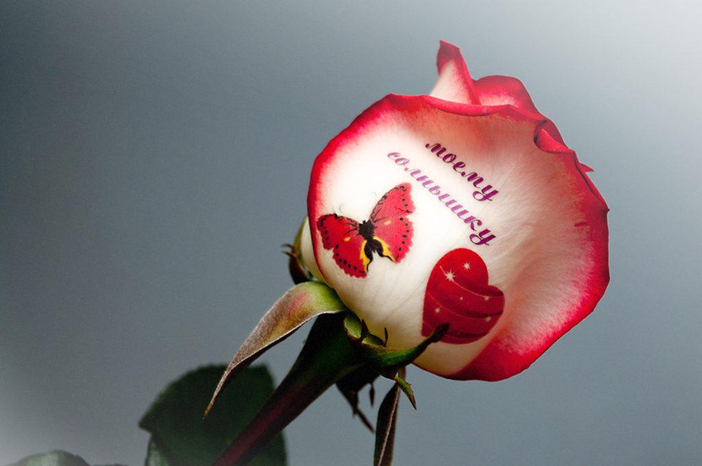 Уникальный подарок фото на цветах