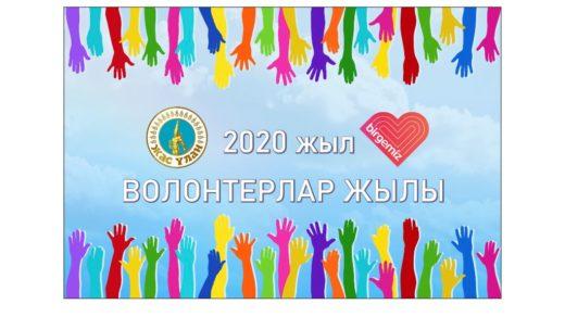 Стенд/баннер волонтерлар жылы, 2020 [CDR]