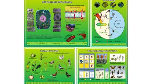 Стенд клетканың құрылысы, фотосинтез, қолдау сұрыптау, тірі ағзалардың қөптүрлілігі [CDR]