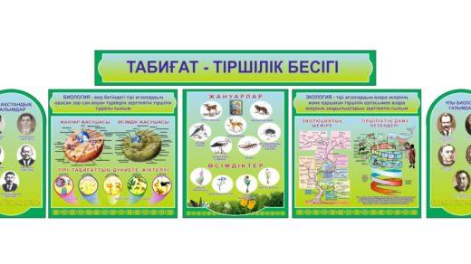 Стенд табиғат тіршілік бесігі , стенд биологии на казахском [CDR]