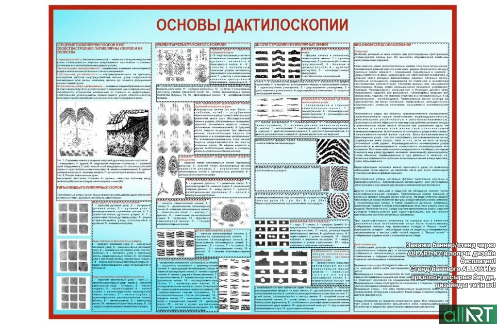Стенд для школы полиции, основы дактилоскопии [CDR]