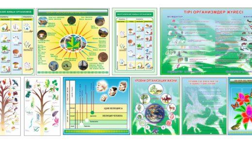 Стенд по биологии, многообразие живых организмов [CDR]