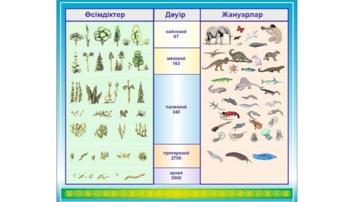 Стенд по биологии эра растения, животные [CDR]