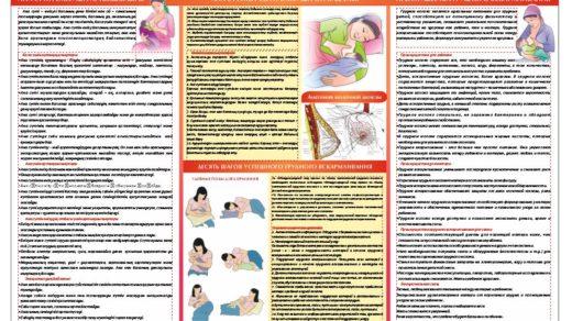 Стенд грудное вскармливание, емшекпен емізу [CDR]